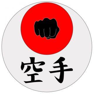 logo_karate_magomedia